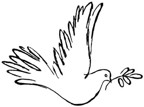 Taube mit Zweig